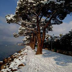 Lazise - Garda Lake