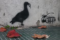 Danger! stencil at home -  en el patio de casa