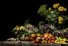 Photographer KRISTA NURMI  Gardnerers Delight  ONE EYELAND