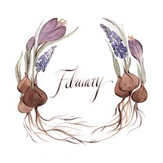February wreath by Kelsey Garrity Riley (via Etsy). Wallpaper Gratis, Happy February, Illustration Art, Illustrations, Groundhog Day, Journal Inspiration, Watercolor Flowers, Watercolour, Sketches