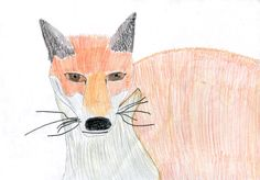 Millie, aged sent us this excellent picture of a fox. Thank you Millie! The Locals, Rooster, Moose Art, Wildlife, Fox, Education, Pictures, Animals, Photos