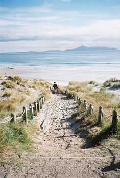 Mangawhai, New Zealand / photo by Mitchell Collins