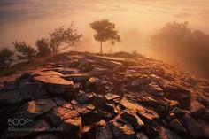 Morning in the Lusatian Mountains (Daniel Řeřicha / Krupka / Czech republic) #Canon EOS 5D Mark II #landscape #photo #nature