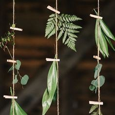 22 Fab Fern-Inspired Wedding Decor Ideas via Brit + Co. Bring the outdoors in with these foliage wedding decor ideas Theme Nature, Deco Nature, Nature Decor, Floral Wedding, Wedding Flowers, Trendy Wedding, Wedding Greenery, Wedding Floral Arrangements, Diy Wedding Deco