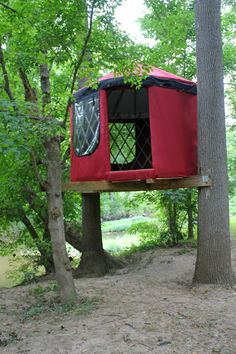 A Tiny House, Yurt, and Tree House ALL IN ONE