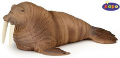 The Walrus from the Papo Marine World collection - Discounts on all Papo Toys at Wonderland Models.