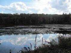 Robbins Pond