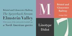 Linotype Didot® - Webfont & Desktop font « MyFonts