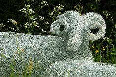 RHS Chelsea flower show.  Wire sheep. https://www.facebook.com/photo.php?fbid=472519432827240=a.472519229493927.1073741836.101937823218738=1