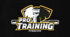 Pro Training | Logo Design | The Design Inspiration