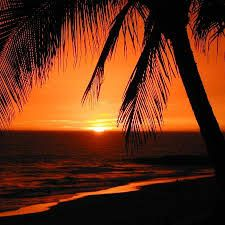 Image result for mazatlan mexico sunset pictures