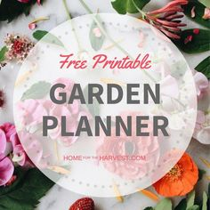 Organic Vegetable Gardening Free Vegetable Garden Planner - Free garden planner designed for your annual vegetable, herb, or flower garden. This wholistic guide leads you step-by-step through garden planning! Free Garden Planner, Vegetable Garden Planner, Vegetable Gardening, Planner Diy, Organic Vegetables, Growing Vegetables, Organic Gardening, Gardening Tips, Gardening Magazines