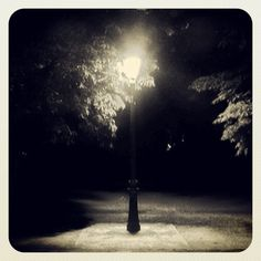 A Walk In The Park - A Poem By PILLI SREE HARSHA