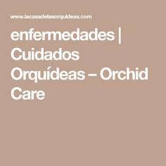 enfermedades | Cuidados Orquídeas – Orchid Care
