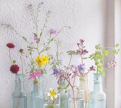 via pachadesign wild flower, vintage bottles, spring wildflower bouquet, color, jar, beauti, pretti, joli fleur