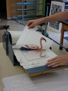 The Calvert Canvas: Adventures in Middle School Art!: Bird Drawings and Watercolor Prints after John James Audubon