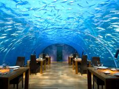 Situated more than 16 feet below sea level in the Indian Ocean, this glass-enclosed spot cost about $5 million USD to construct. Patrons can scope 180-degree views of coral reefs and a wide variety of fish, as well as manta rays, sharks, and other aquatic inhabitants in the Maldives.