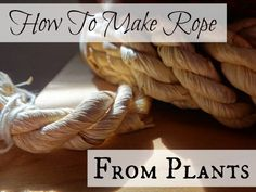 Learn how to make your own rope or cordage from plant fibers!