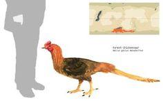 Forest Chickensaur by PLASTOSPLEEN