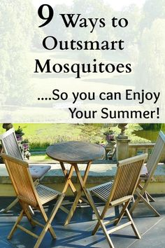 The worst pest to me is the mosquito. I have to find ways to outsmart mosquitoes so that I can actually enjoy being outside during the warmer months. I am semi-allergic to mosquitoes. When they bite me I get huge, itchy welts on my body. It's not pretty! You can use these tips to keep …