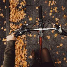 Fall leaves bike ride autumn aesthetic