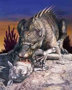 """Chupacabra- mexican cryptid: (alien) an alien that was left behind or a mutant created by aliens. (monster) a paranormal creature that sucks the blood out of its victims such as goats and chickens Its actuality: a mangy coyote and other mangy dogs. The three puncture wounds on its """"victims"""" were it supposedly sucked the blood was simply a person who wanted attention and drained the blood. Take in account that no one had found a wild animal with these signature puncture wounds"""