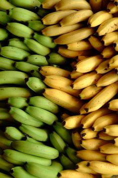 yes, we have bananas! Green And Purple, Green Colors, Yellow, Bananas, Fruits And Veggies, Vegetables, Banana Art, Tropical, Fruit Drinks