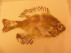 Gyotaku - Japanese Fish Prints. I really want to try this. They make awesome framable art.