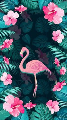 32 Ideas wall paper fofos novos flamingos in 2019 Cute Wallpaper Backgrounds, Wallpaper Iphone Cute, Screen Wallpaper, Wallpaper S, Cute Wallpapers, Flamingo Wallpaper, Flamingo Art, Pink Flamingos, Flamingo Float