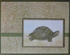 Nature's Nest Can't Resist that Tortoise! by joy3ce - Cards and Paper Crafts at Splitcoaststampers