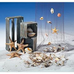 Dekoidee Muscheln Muscheln sind ideal für eine maritime Sommerdeko. Mit einem Fischernetz, zum Schmücken, Sammeln oder Verschenken - den vielfältigen Einsatzmöglichkeiten sind keine Grenzen gesetzt. http://www.decowoerner.com/de/Saison-Deko-10715/Sommer-10744/Komplette-Dekoideen-Sommer-11325/Dekoidee-Muscheln-605.489.00.html