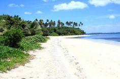 Fafa Island, Tonga. Tonga, Travel Pictures, Paradise, Island, Beach, Water, Outdoor, Archipelago, Travel Photos