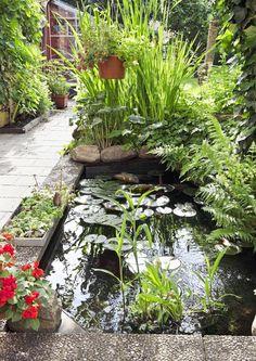 6 x puutarhan vesiaihe | Meillä kotona