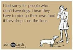 I feel sorry for people who don't have dogs, I hear they have to pick up their own food if they drop it on the floor.