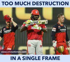 Cricket Score, Live Cricket, Cricket News, Cricket Quotes, India Cricket Team, Brain Facts, Ab De Villiers, Sports Celebrities, Virat Kohli