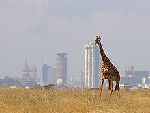 Nairobi... Yes!!!