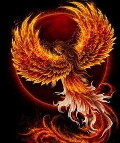 Ideas For Phoenix Bird Firebird Dragon Dark Phoenix, Phoenix Bird, Phoenix Rising, Phoenix Wings, Phoenix Artwork, Phoenix Images, Fantasy Creatures, Mythical Creatures, Flame Art