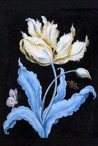 Tulip and butterflies by Barbara Regina Dietzsch