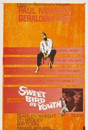 Sweet Bird Of Youth Movie Online. Drifter Chance Wayne returns to his hometown after many years of trying to make it in the movies. Arriving with him is a faded film star he picked up along the way, Alexandra Del Lago. ...