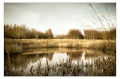 Another Pond by Anders Stangl on 500px