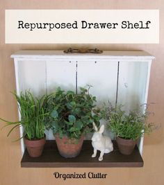 a repurposed drawer shelf, home decor, repurposing upcycling, shelving ideas, The addition of a board to the back of the drawer provided a perfect amount of display area Old Drawers, Dresser Drawers, Dressers, Cabinet Drawers, Drawer Shelves, Display Shelves, Book Shelves, Repurposed Furniture, Diy Furniture