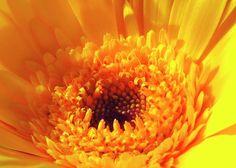 Bright joyful # greetingcards #hurmerintaart
