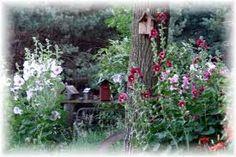 Google Image Result for http://i243.photobucket.com/albums/ff220/jeannespines/FlowersNature/HollyhocksShadesofColor610.jpg