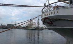 Operation Gdynia Sails Operacja Żagle Gdyni #gdynia #sailing #darpomorza