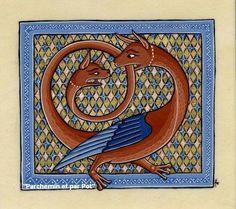 enluminure dragon.