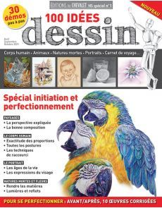 100 idées DESSIN - Spécial initiation et perfectionnement Initiation, Drawing Ideas, Fine Art Paintings