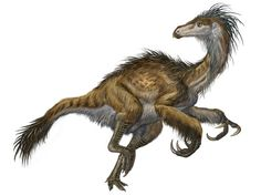 Beipiaosaurus inexpectus, one of the first feathered dinosaurs unearthed (in China in 1997)