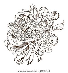 Japanese flower Tattoo chrysanthemum flower blossoms
