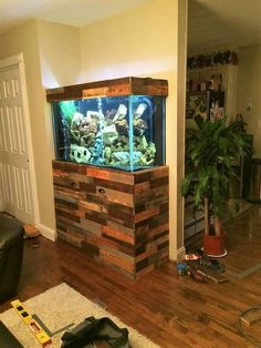 cientouno: Fish tank stand design ideas office aquarium 55 Gallon Turtle Tank Stand Best Fish Ideas On Stands Aquarium Wood Plans Ta Flyingwithkidsco Fish Aquarium Stands Tedxgustavus Diy Aquarium Stand, Saltwater Aquarium Setup, Wall Aquarium, Aquarium Terrarium, Aquarium Design, Saltwater Tank, Aquarium Fish Tank, Fish Tanks, Aquarium Ideas