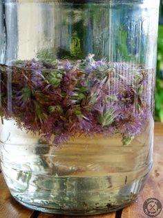 Λικέρ Θυμάρι Smoothie Drinks, Marmalade, Sweet Recipes, Healthy Recipes, Terrarium, Liquor, Drinking, Glass Vase, Beverages